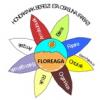 HONDAKINAK 2012-2013 ikasturtea